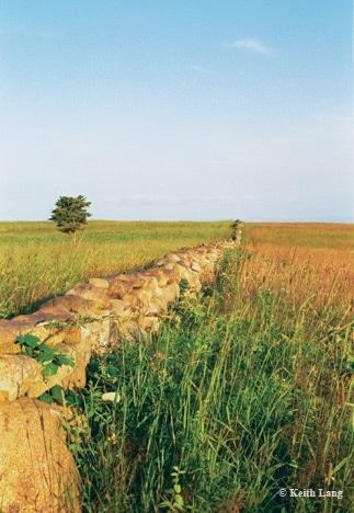 Lang-Wall